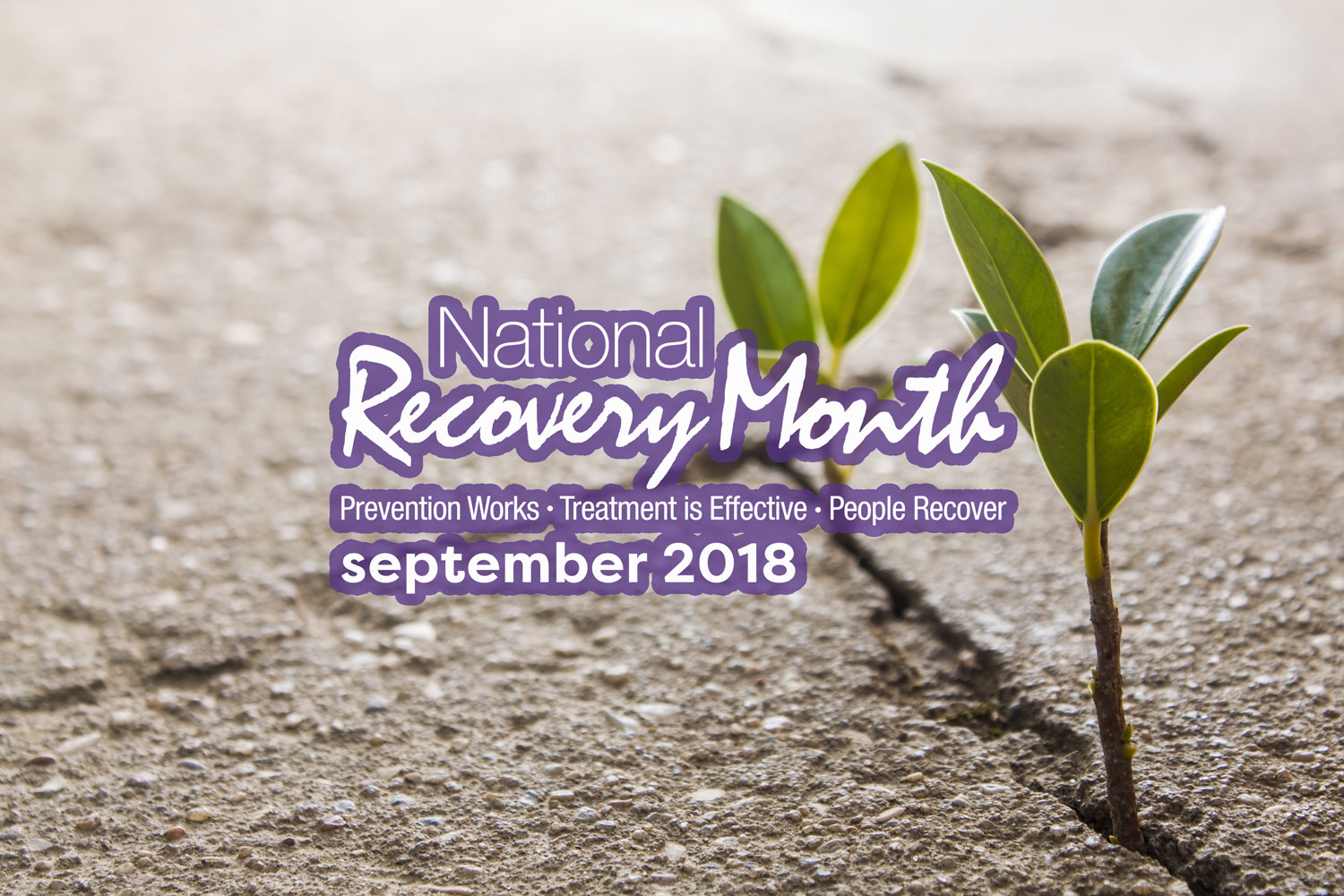 """Featured image for """"Recovery Month!"""""""